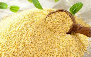 cheap millets and grains - CGhealthfood.jpeg